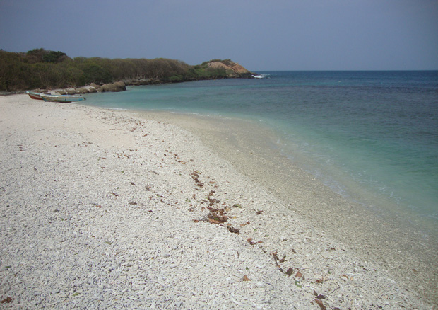 Sober Island Resort Lk